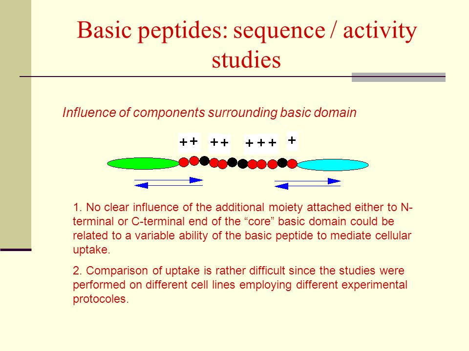 Basic peptides: sequence / activity studies
