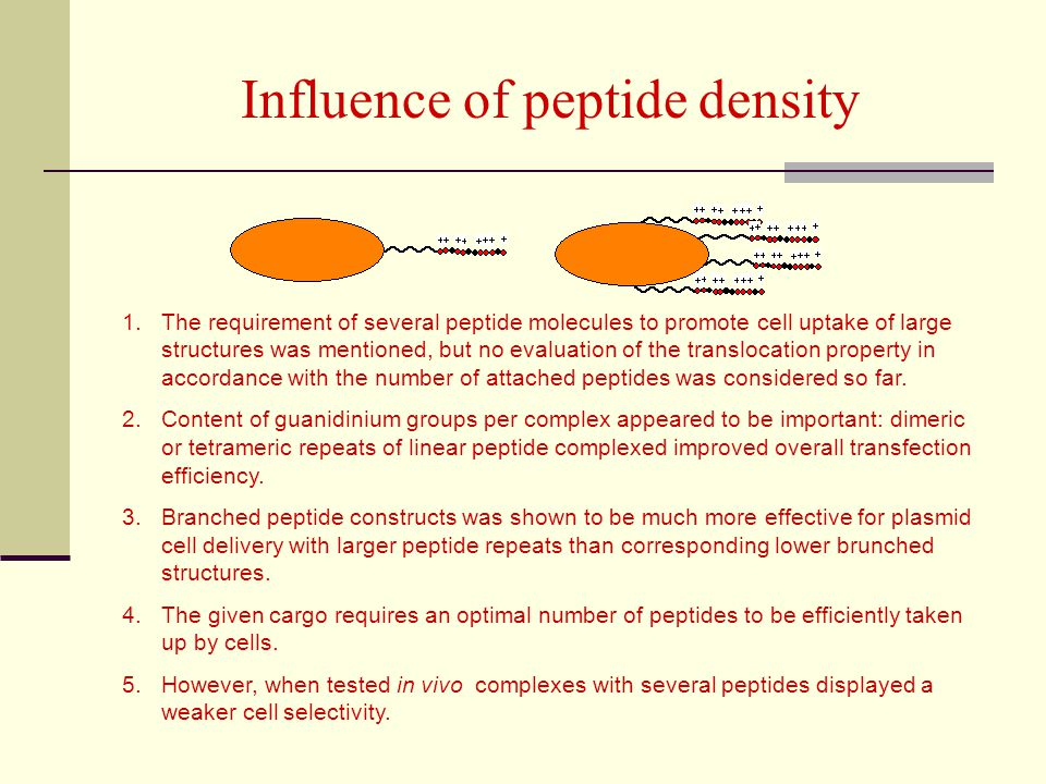 Influence of peptide density
