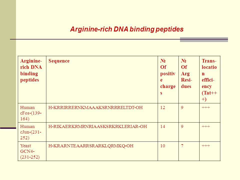 Arginine-rich DNA binding peptides