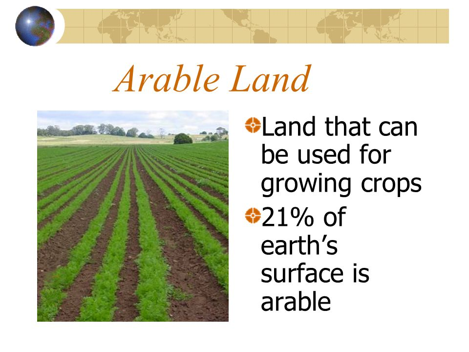 Arable Land Land that can be used for growing crops