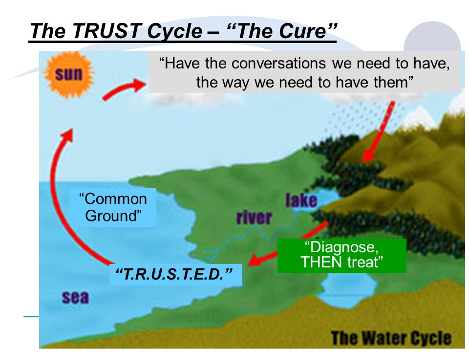 The TRUST Cycle – The Cure