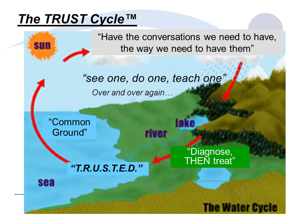 The TRUST Cycle™ see one, do one, teach one