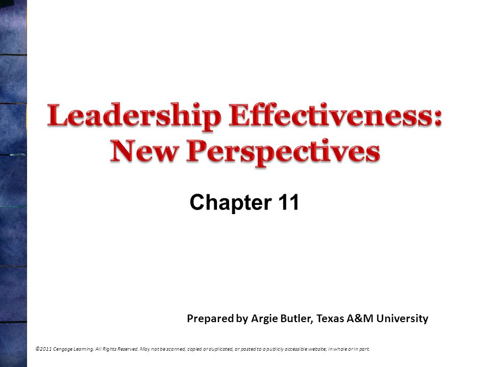 Leadership Effectiveness: New Perspectives