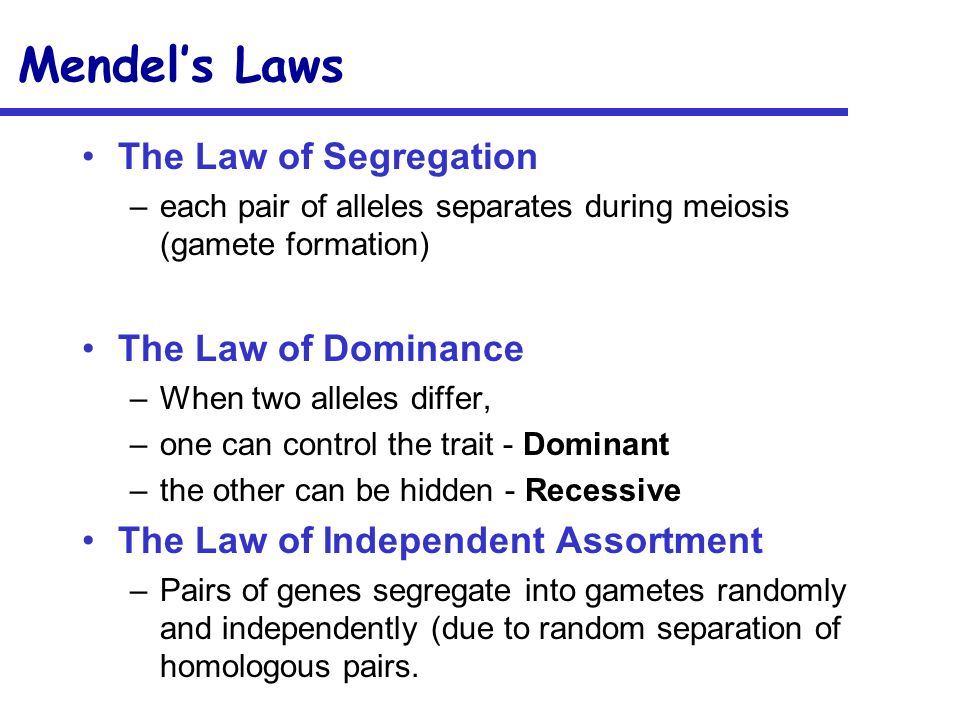 Mendel's Laws The Law of Segregation The Law of Dominance