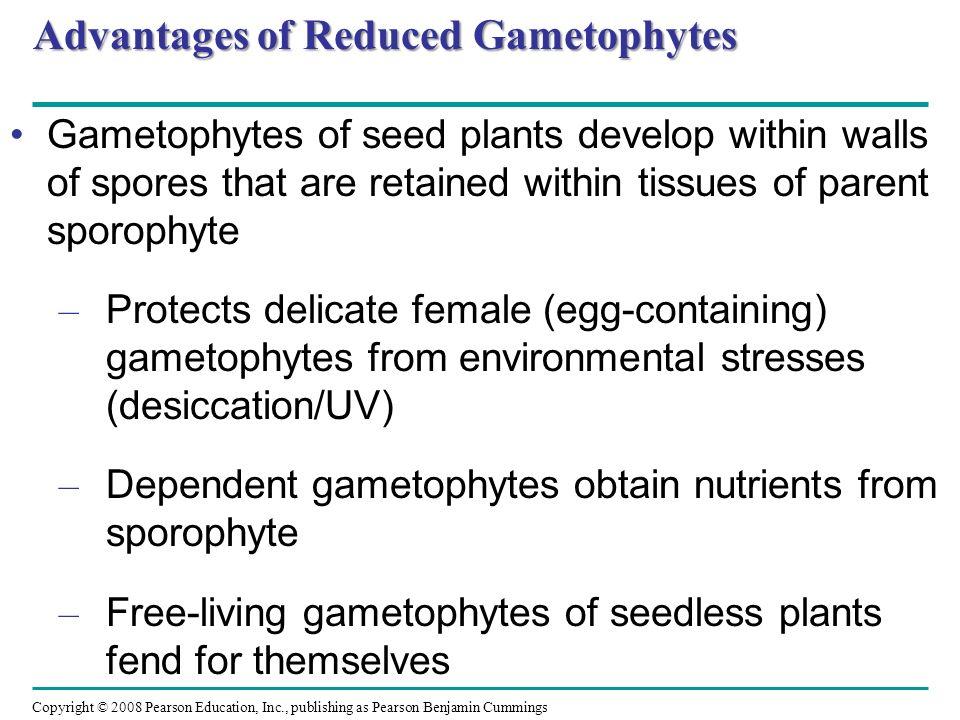 Advantages of Reduced Gametophytes