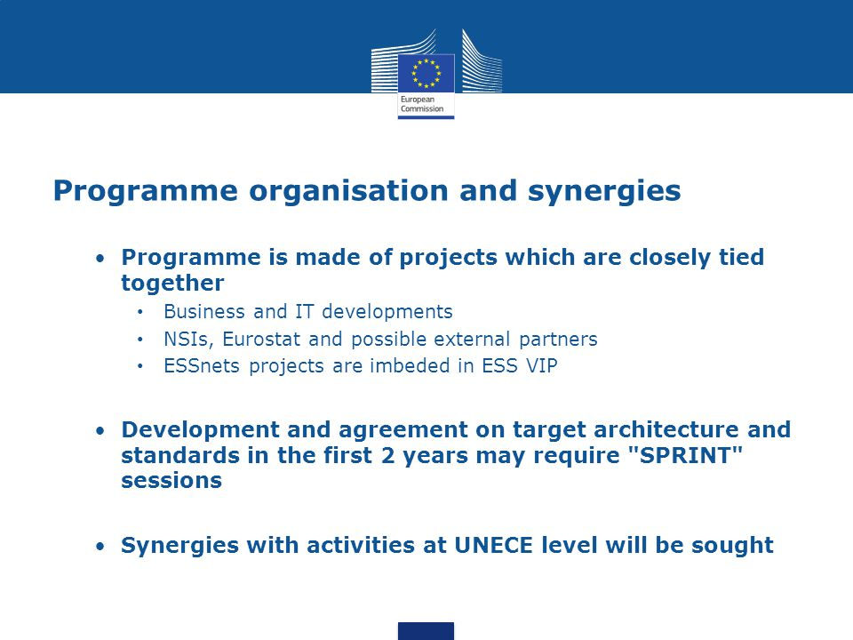 Programme organisation and synergies