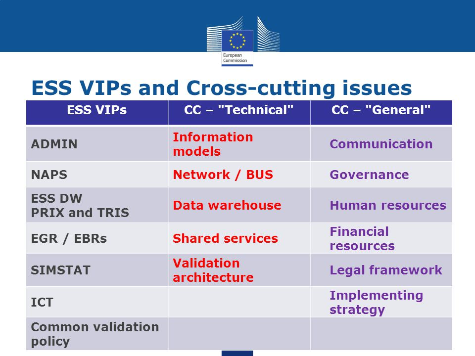 ESS VIPs and Cross-cutting issues