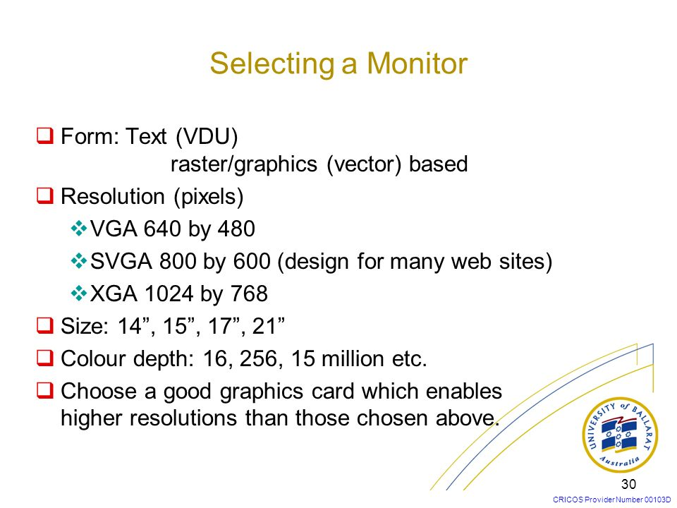 Selecting a Monitor Form: Text (VDU) raster/graphics (vector) based