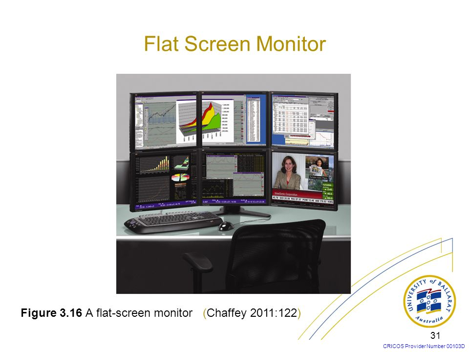 Flat Screen Monitor Figure 3.16 A flat-screen monitor (Chaffey 2011:122)