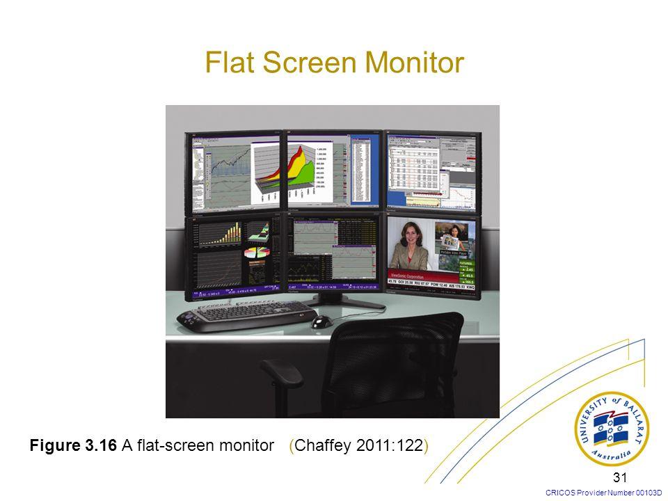 Flat Screen Monitor Figure 3.16 A flat-screen monitor (Chaffey 2011:122)