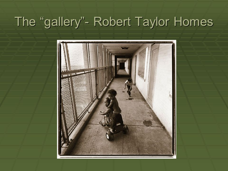 The gallery - Robert Taylor Homes