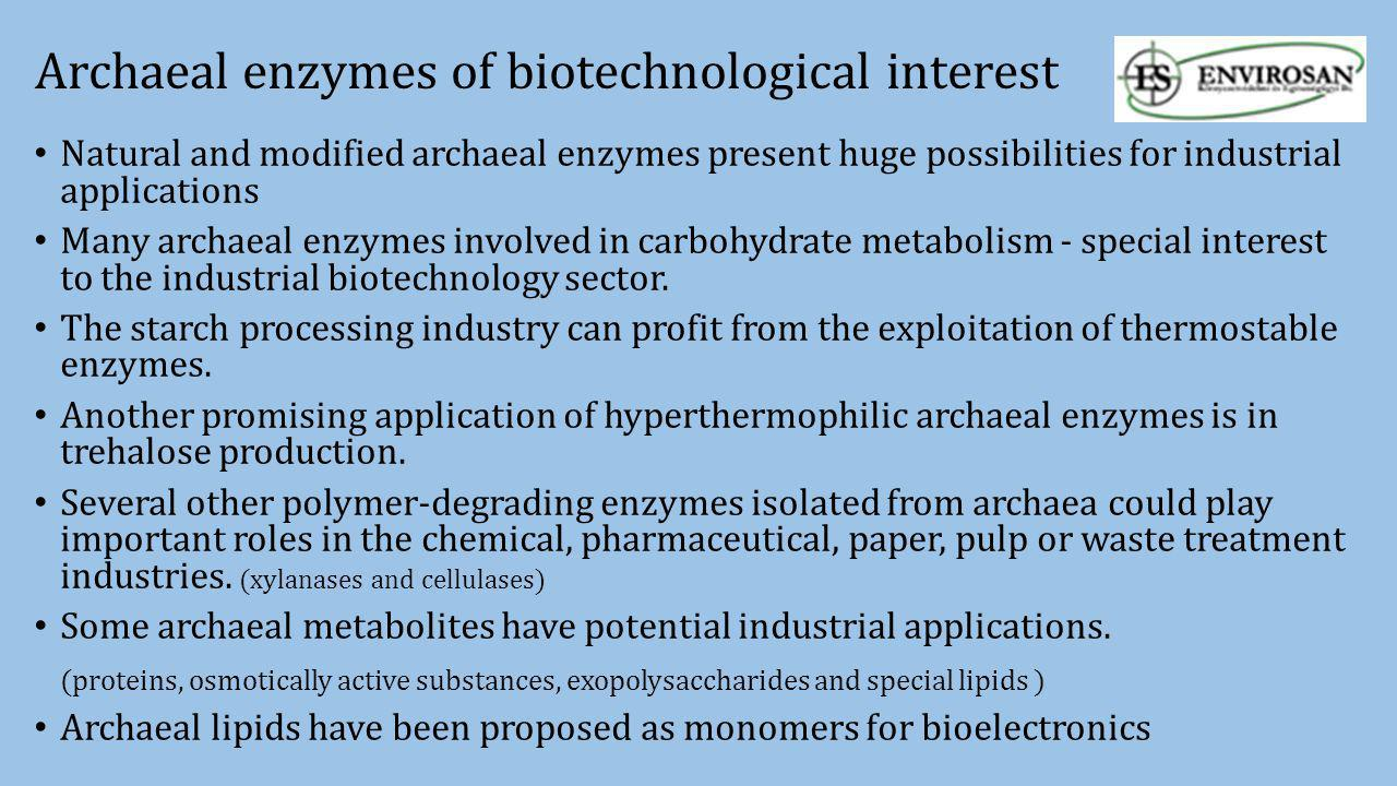 Archaeal enzymes of biotechnological interest