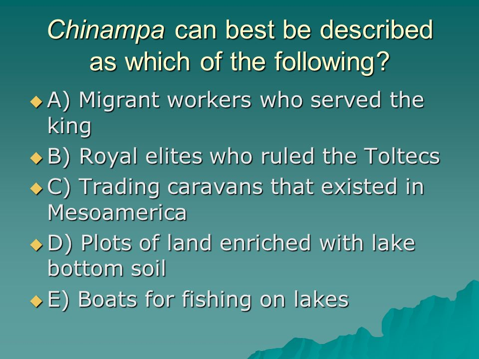Chinampa can best be described as which of the following