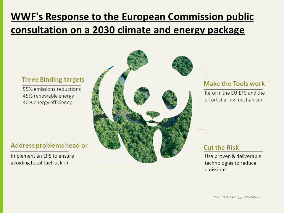 WWF s Response to the European Commission public consultation on a 2030 climate and energy package
