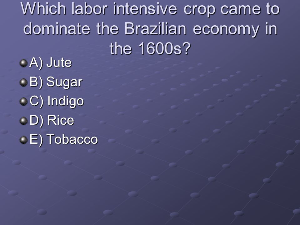 Which labor intensive crop came to dominate the Brazilian economy in the 1600s