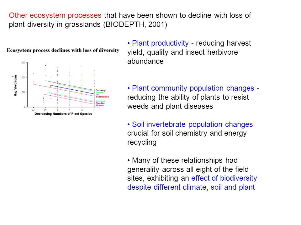 Other ecosystem processes that have been shown to decline with loss of plant diversity in grasslands (BIODEPTH, 2001)