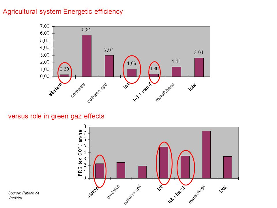 Agricultural system Energetic efficiency