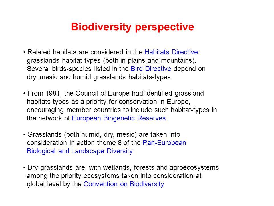 Biodiversity perspective