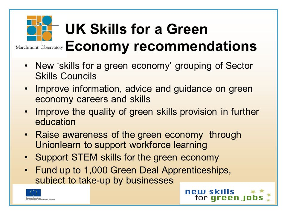 UK Skills for a Green Economy recommendations