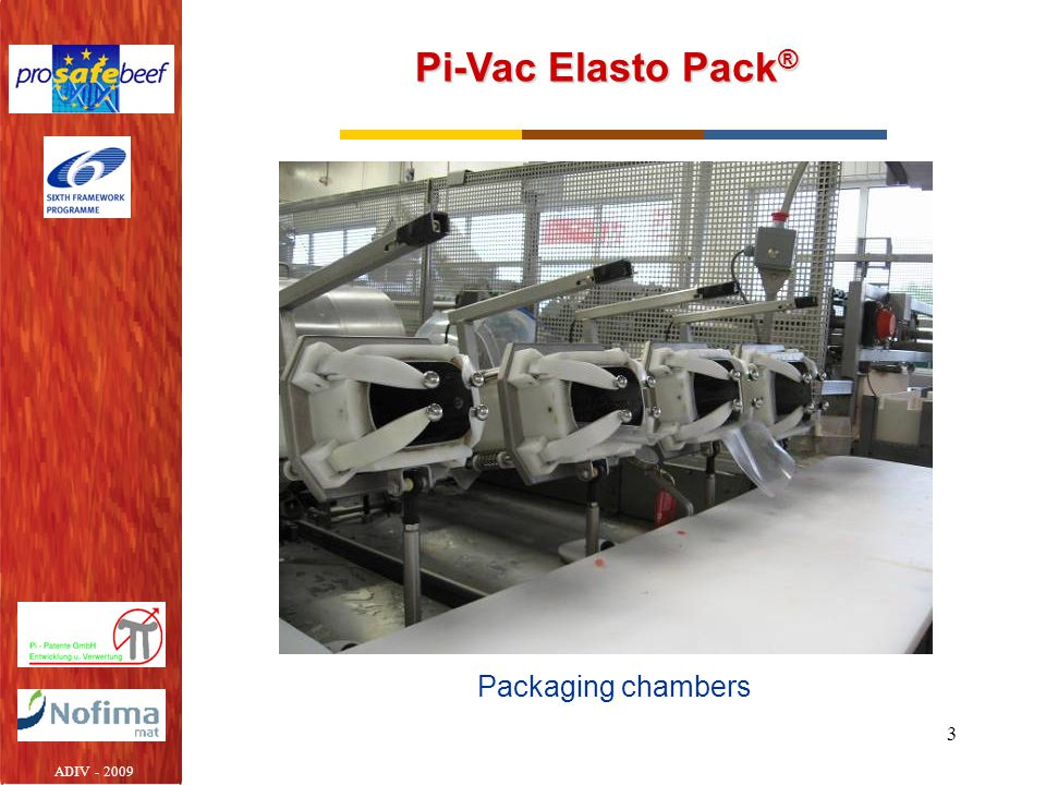 Pi-Vac Elasto Pack® Packaging chambers ADIV - 2009