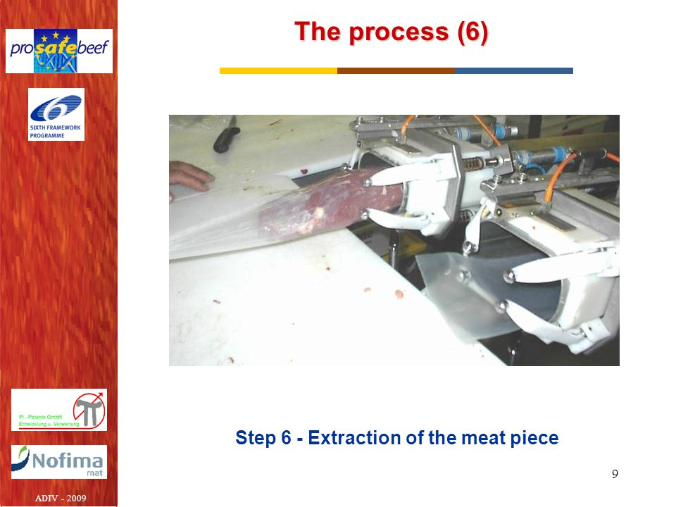 Step 6 - Extraction of the meat piece