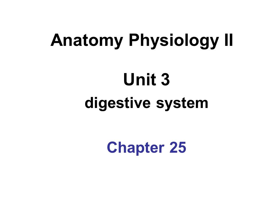 Unit 3 digestive system Chapter 25