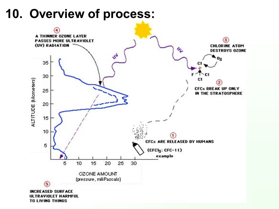 10. Overview of process: