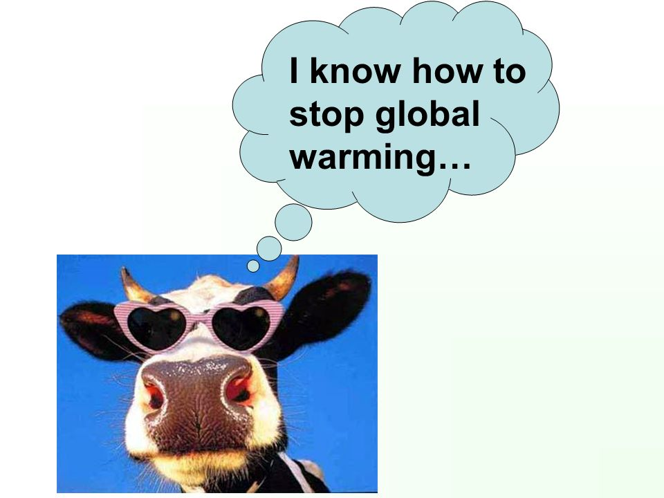 I know how to stop global warming…
