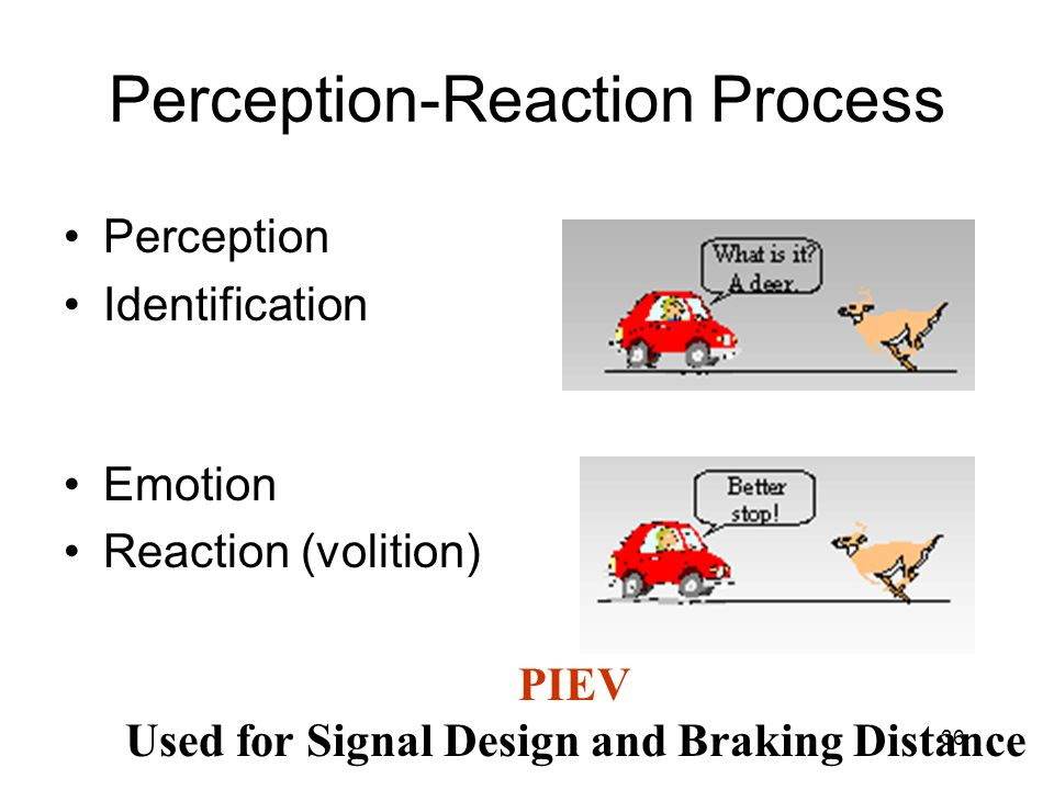 Perception-Reaction Process