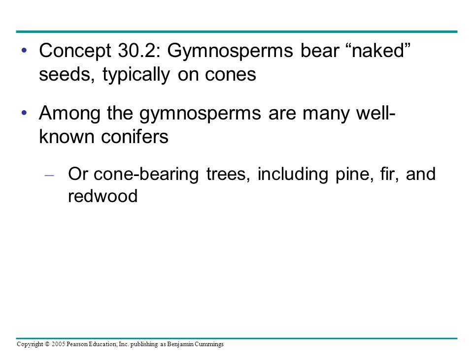 Concept 30.2: Gymnosperms bear naked seeds, typically on cones