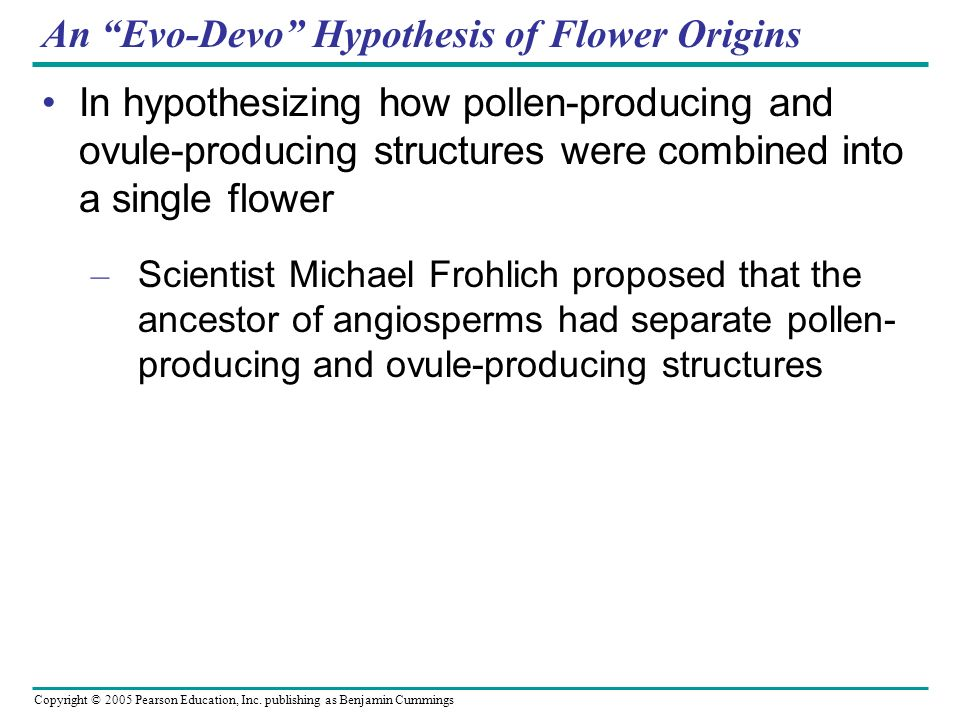An Evo-Devo Hypothesis of Flower Origins
