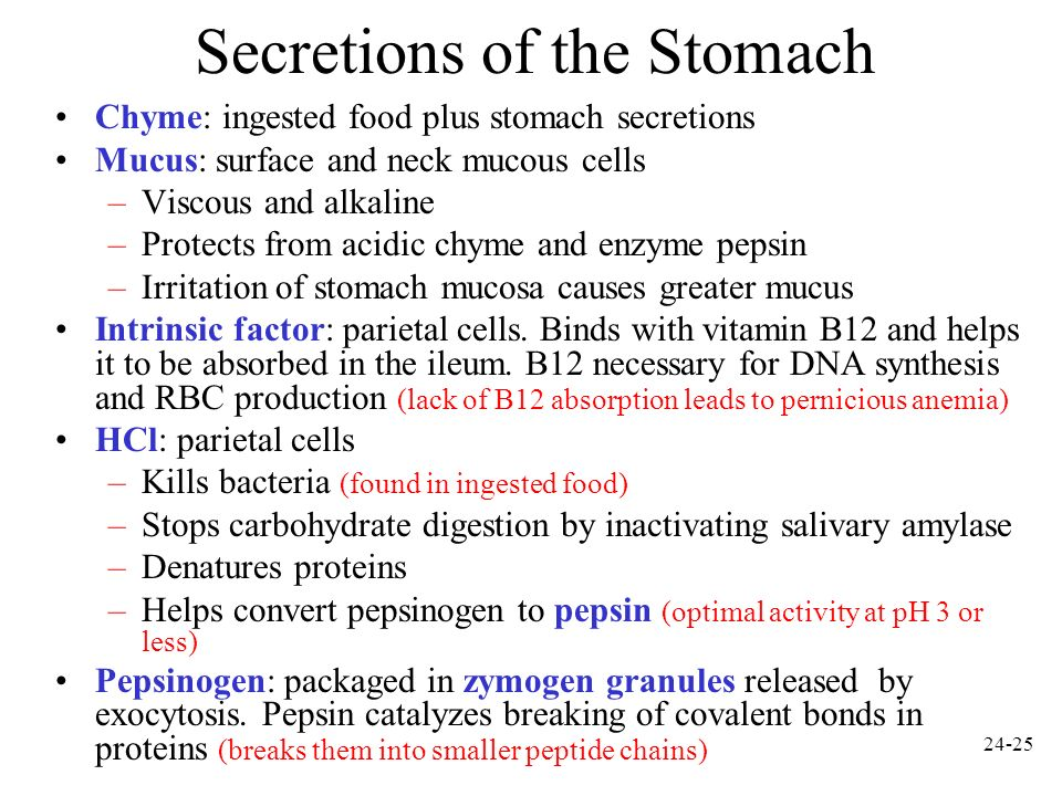 Secretions of the Stomach