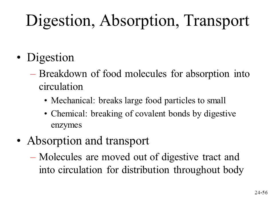 Digestion, Absorption, Transport