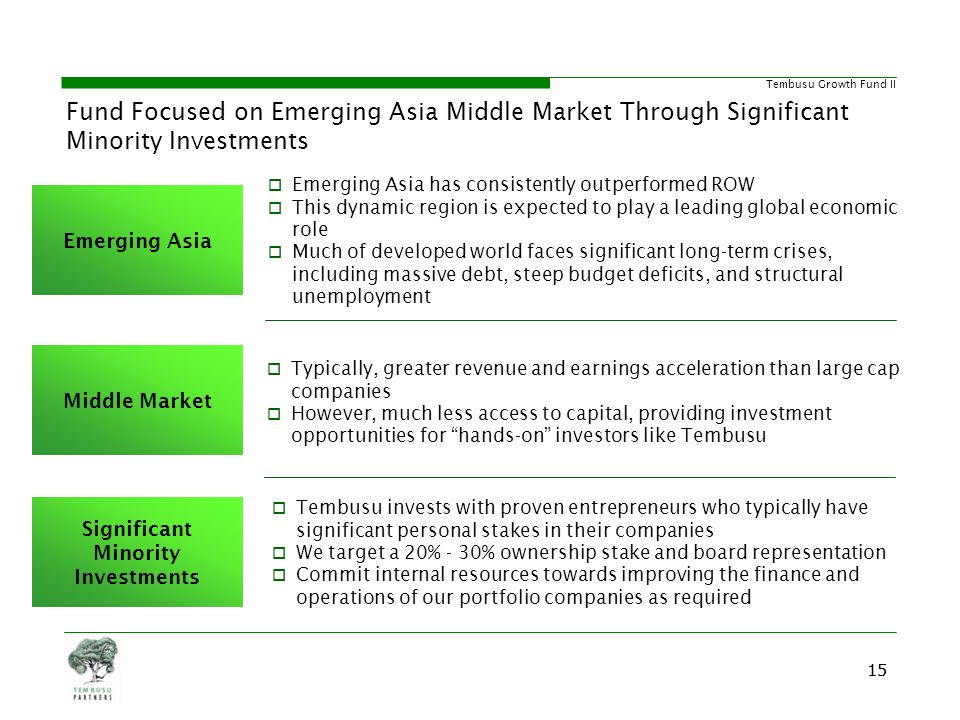 Significant Minority Investments