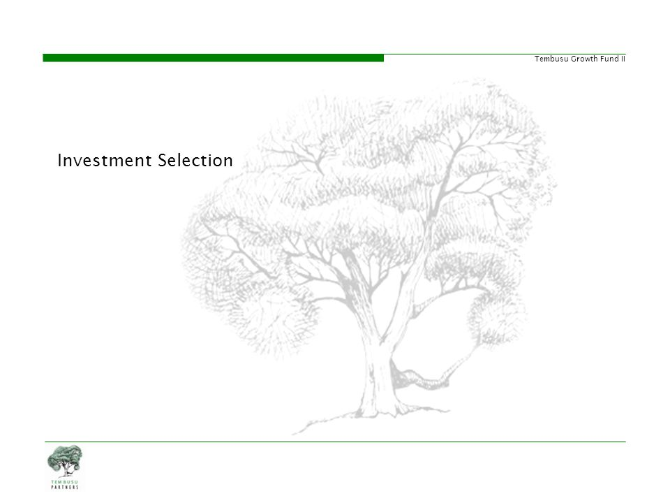 Investment Selection 20