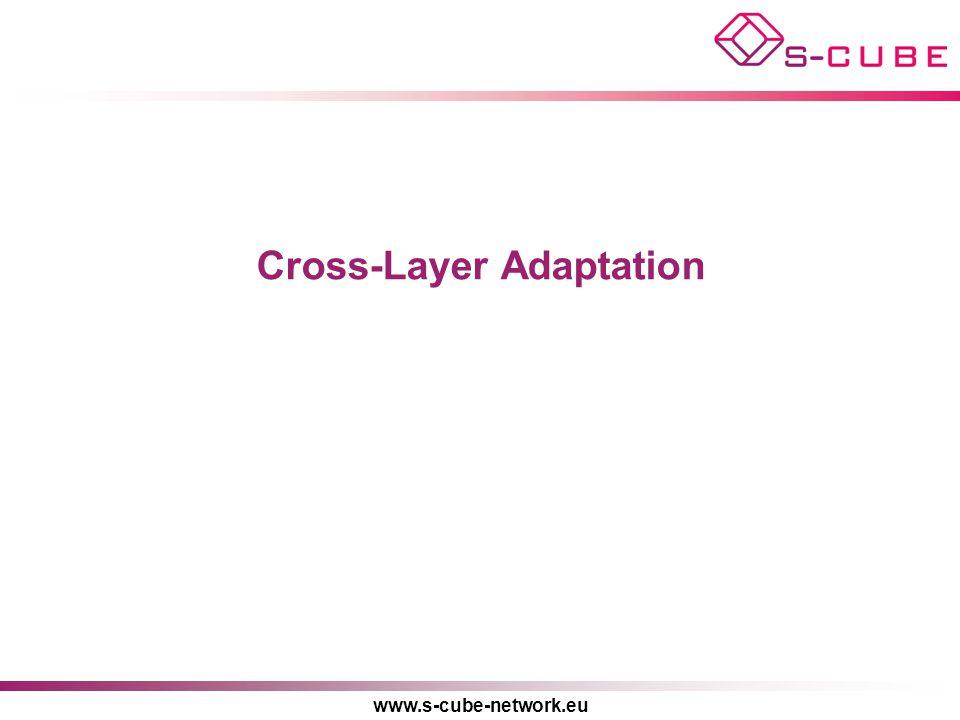Cross-Layer Adaptation
