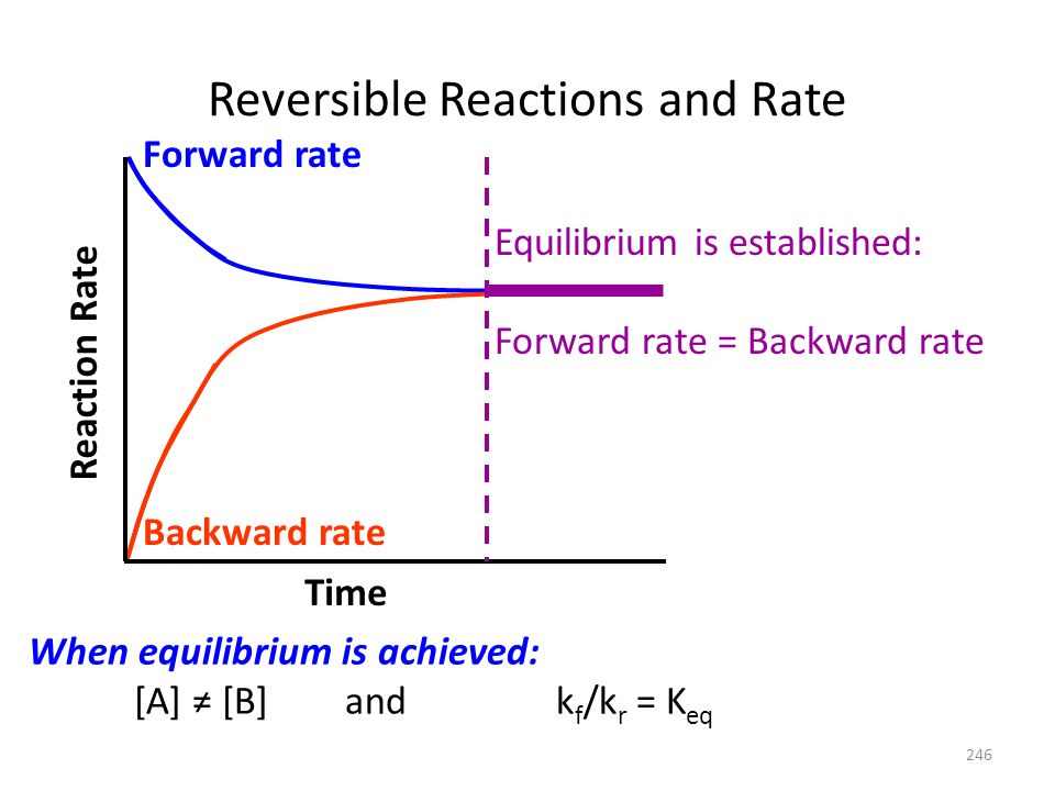Reversible Reactions and Rate