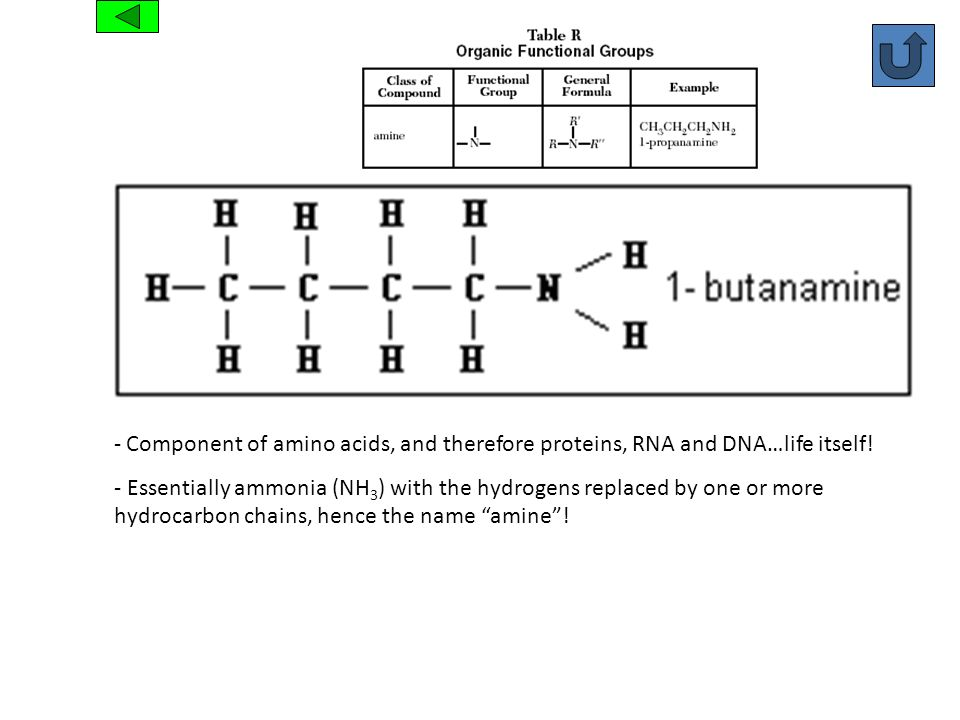 Amine Component of amino acids, and therefore proteins, RNA and DNA…life itself!