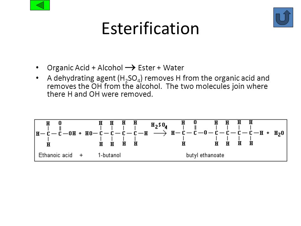 Esterification Organic Acid + Alcohol  Ester + Water