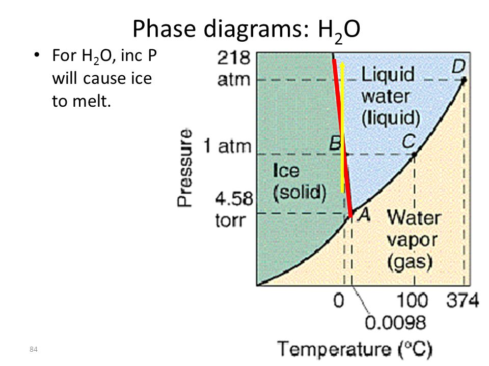 Phase diagrams: H2O For H2O, inc P will cause ice to melt.