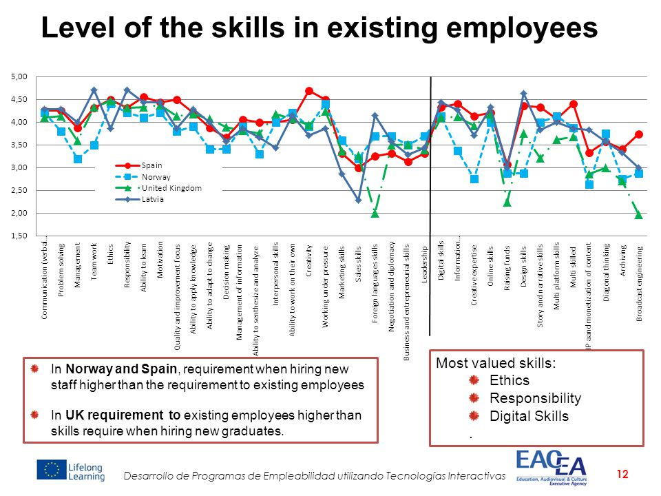 Level of the skills in existing employees