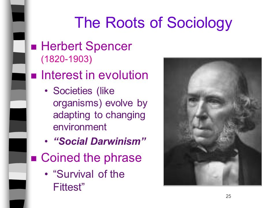 The Roots of Sociology Herbert Spencer (1820-1903)