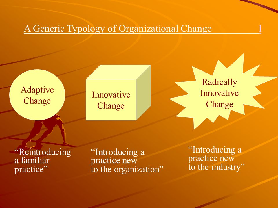 A Generic Typology of Organizational Change l