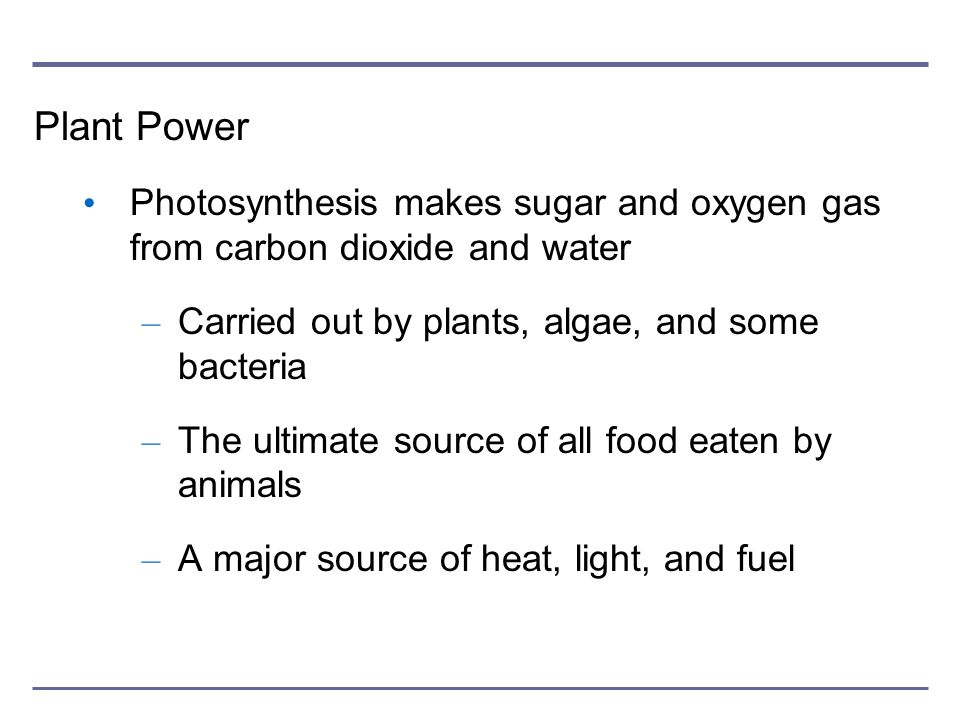 Plant Power Photosynthesis makes sugar and oxygen gas from carbon dioxide and water. Carried out by plants, algae, and some bacteria.
