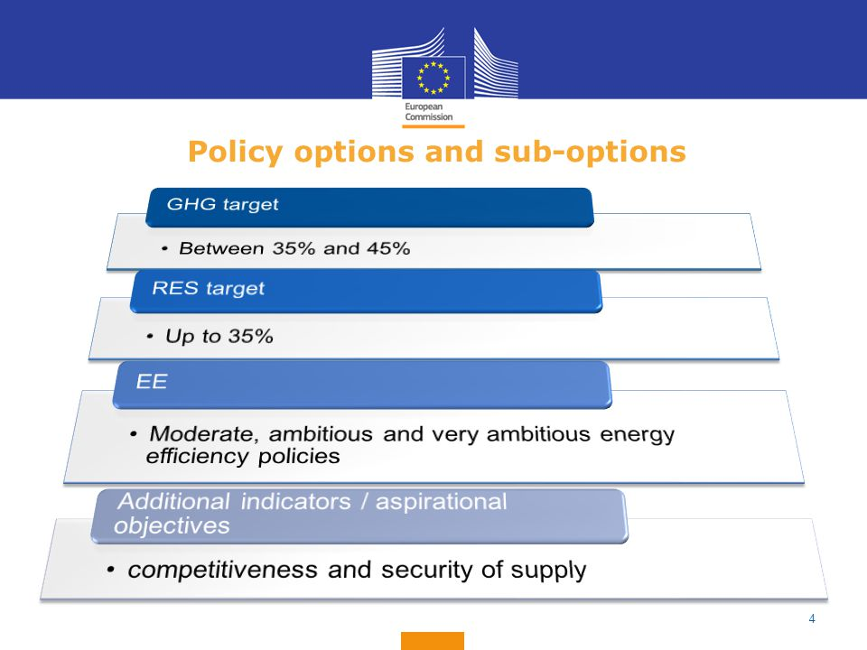 Policy options and sub-options