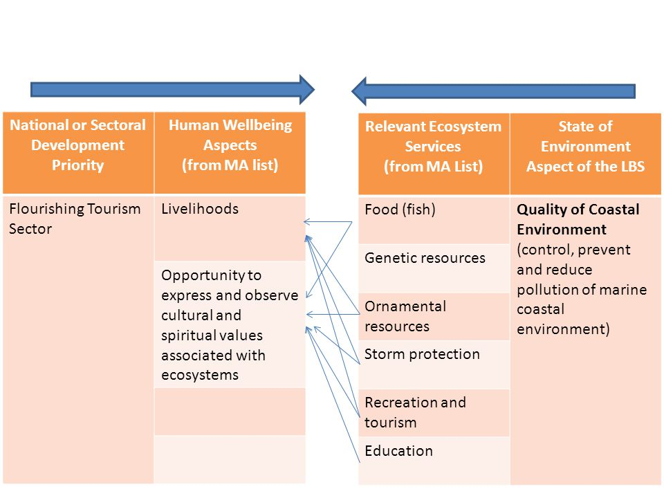 National or Sectoral Development Priority Human Wellbeing Aspects