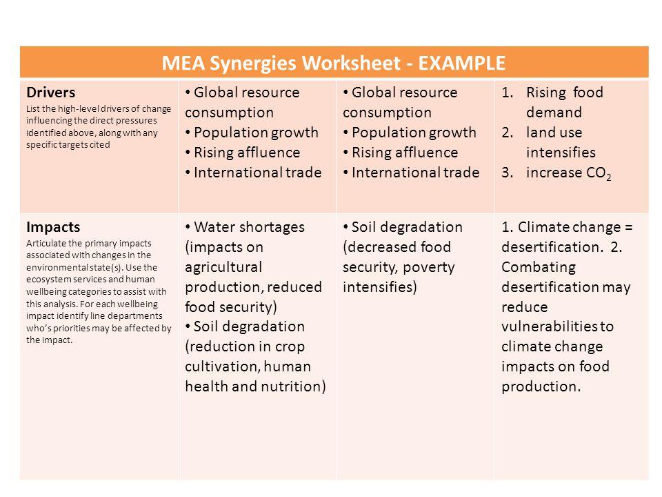 MEA Synergies Worksheet - EXAMPLE