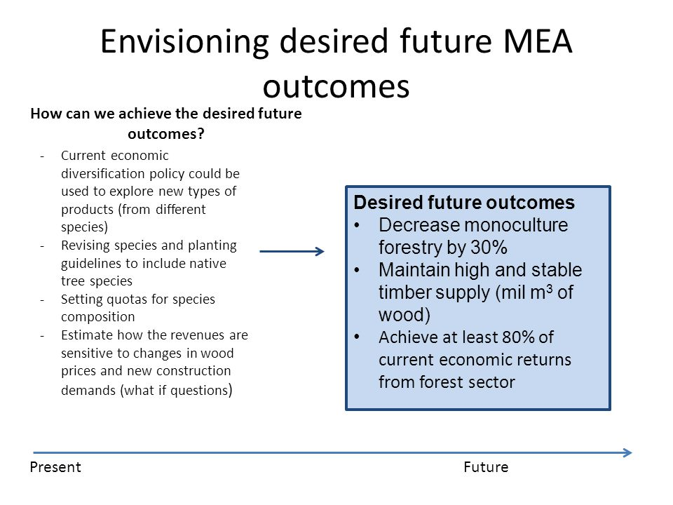 Envisioning desired future MEA outcomes