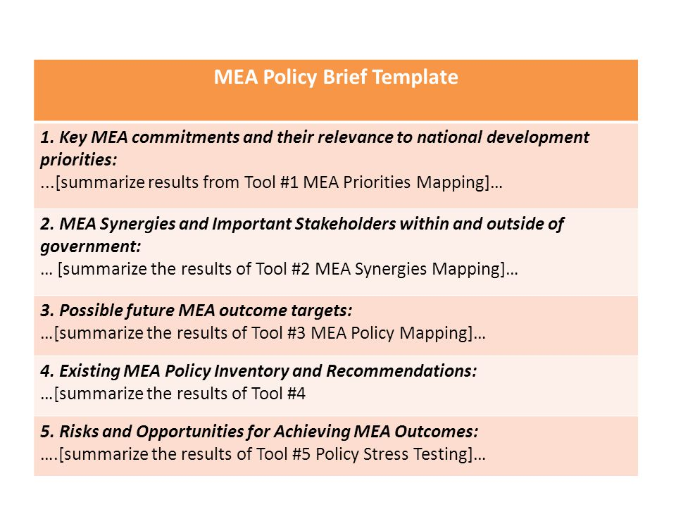 MEA Policy Brief Template