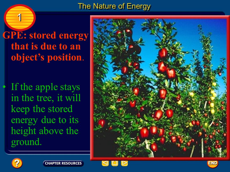 GPE: stored energy that is due to an object's position.